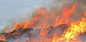 Protezione Civile:15° Corso Avvistamento Incendi Boschivi