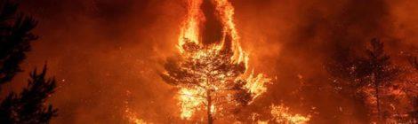 Inizio servizio Avvisamento Incendi Boschivi