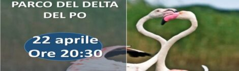 Avifauna del Delta del Po in conferenza